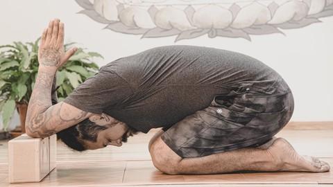 Hatha yoga nivel 1