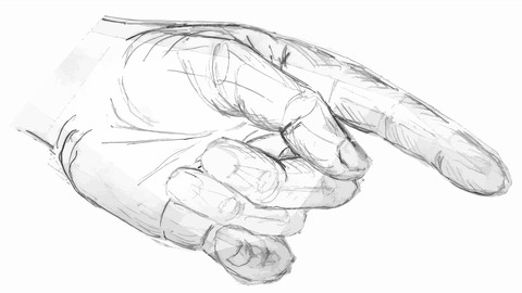 The Complete Beginners Guide to Pencil Drawing