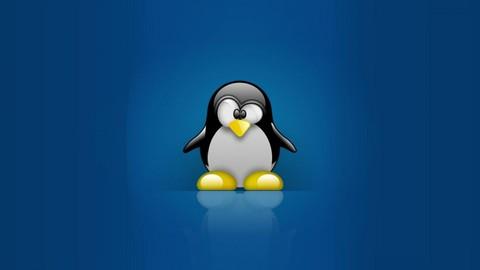 Введение в Linux