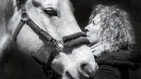 Animal Communication Beginner Level