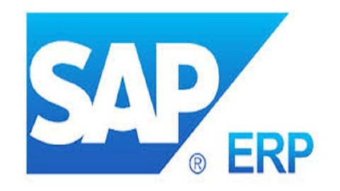 SAP ERP Eğitim Seti