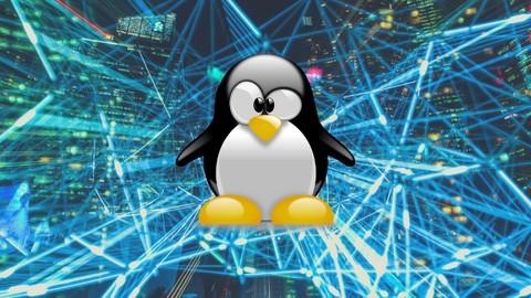 Linux pour booster votre carrière professionnelle