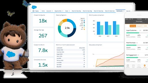 Introduction to the Salesforce ecosystem and way forward