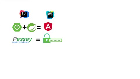 Professional Web Authentication System Password Validation