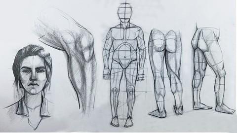 Sıfırdan İleri Seviyeye Anatomik FİGÜR Çizimi Kursu
