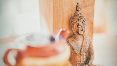 Conscious Meditation For Beginners | Experiential Learning