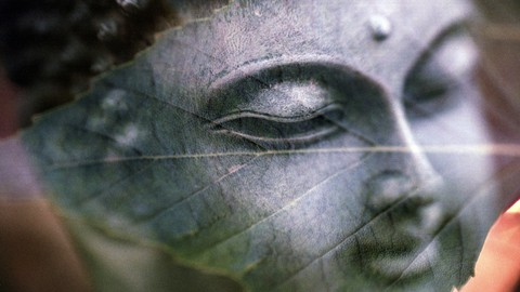 Buddhist Meditation to cultivate Calm