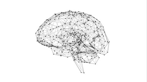 An Applicable Approach To Neuroplasticity & Neuroscience