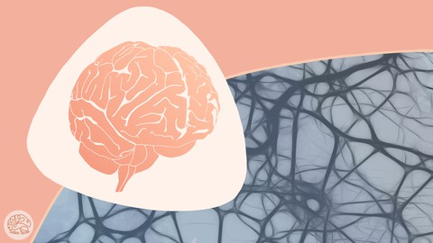 NoticeNeuro's Intro to Neuroscience