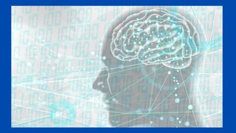 記憶の仕組み【3つの脳タイプ】英語学習活用法