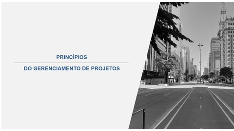 Minicurso Gratuito - Princípios do Gerenciamento de Projetos
