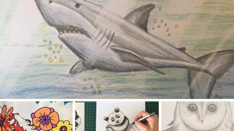 Four Animal Drawing Lessons incl Damien Hirst's Unicorn.