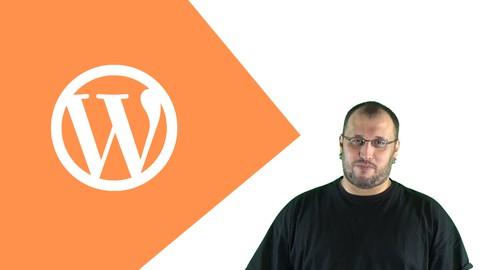 WordPress Einsteigerkurs: Webseite selbst erstellen