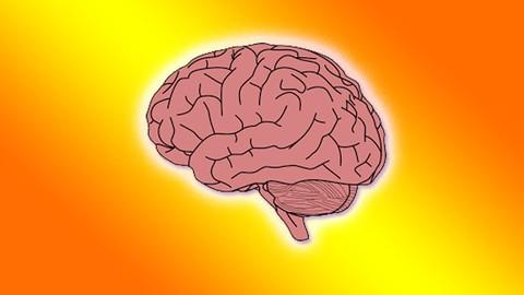 Akıllı Hafıza Teknikleri