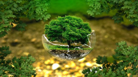 Environmental and Ecology Management