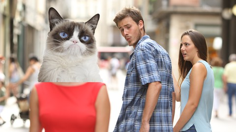 Memes 101