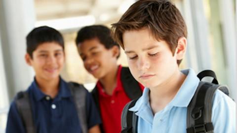 Bully Prevention Strategies