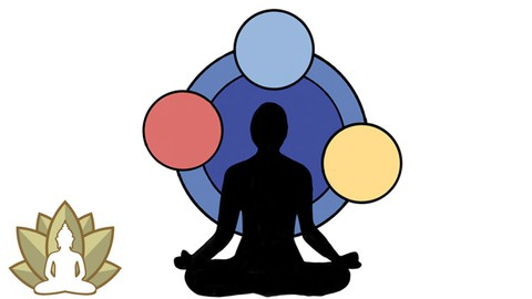 Ayurveda Prakruti (What's your Dosha?)
