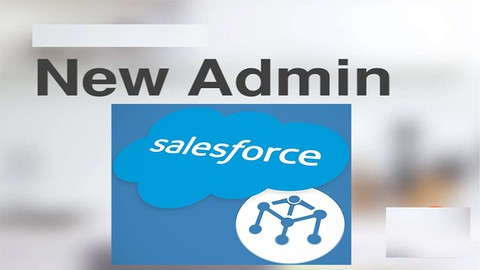 Salesforce Tests : Administration Essentials for New Admins