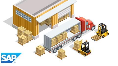SAP ERP : Gestion magasin WM (débutant et avancé)