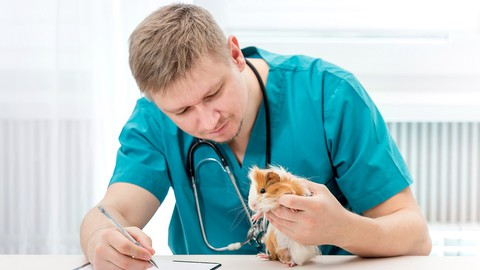 Exotic Animal Care Training Course