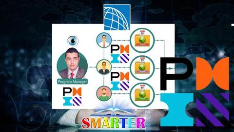 2021 Program Management Professional (PMI PgMP®)