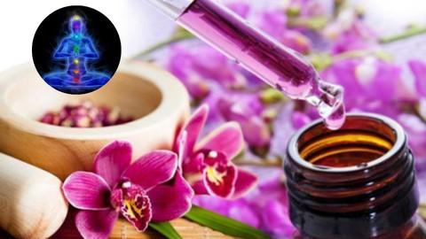 Biopsicoterapia Transdimensional com Florais especializados.