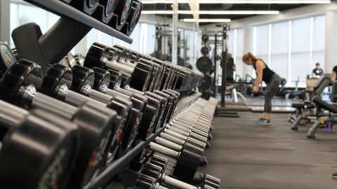 Fitness Rentable : comment vivre du coaching sportif