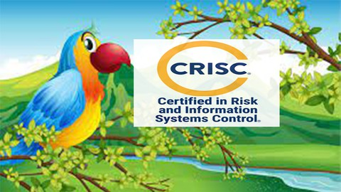 Isaca : Certified in Risk and Information Systems Control