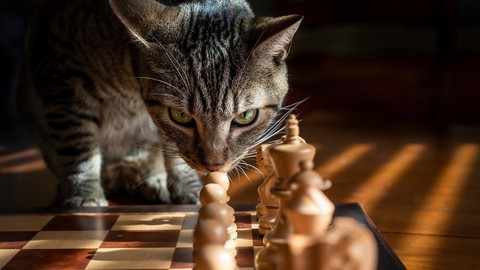 Bobby Fischer's most instructive games of Chess 1963-1968