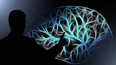 Bias Check 1, 2... Are We Really in Control of Our Brain?