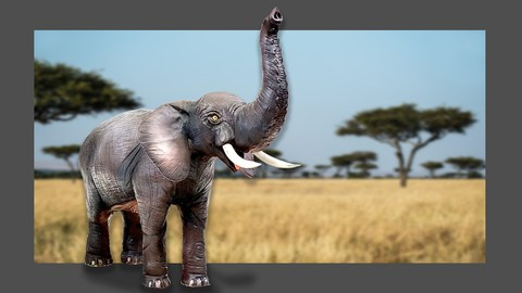 Learn to Make Realistic 3D Elephant cake