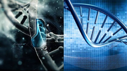Practical Bioinformatics: Play with Genes On Your Screens.