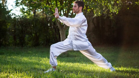 Introduction to Clinical Tai Chi System of Balance