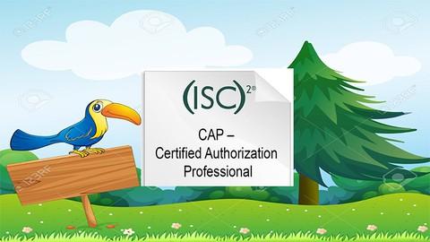 certified authorization professional (cap) practice Exam