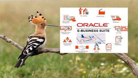 Oracle E-Business Suite (EBS) Essentials certification 2021