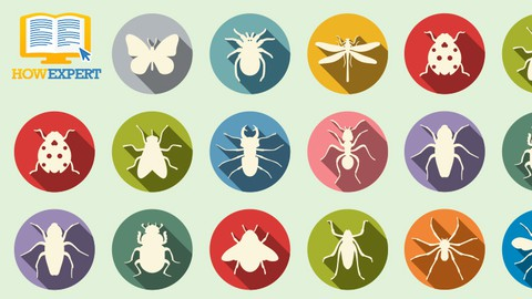 HowExpert Guide to Insects