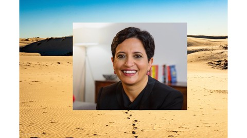 How To Succeed As A Solo Entrepreneur with Sramana Mitra