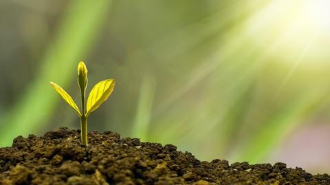 Incrementa tu Poder Espiritual y Reconoce tus Bendiciones