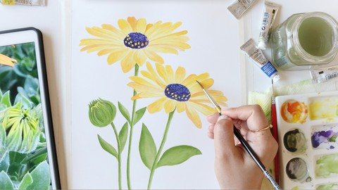Watercolor Botanical Painting for Beginners