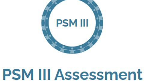 Professional Scrum Master III - PSM 3 / PSM III