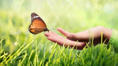 Increase Your Spiritual Energy