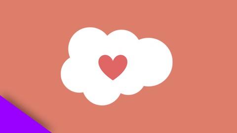 6x Salesforce Nonprofit Cloud Consultant Practice Tests 2021