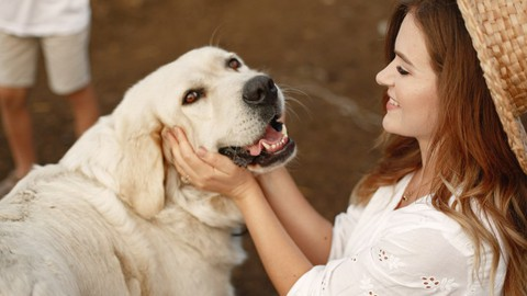 How to Care for Animals: A Complete Animal Care Guide
