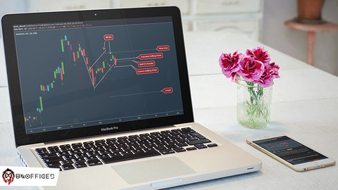 How to Trade Flag Chart Pattern in Price Action Trading