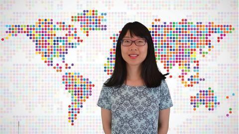 Cross-cultural Adjustment - For Expats (Level 1)