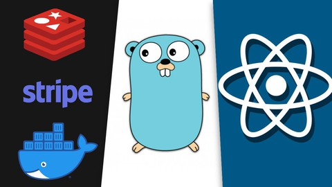React, NextJS and Golang: A Rapid Guide - Advanced