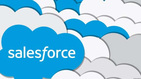 Salesforce Data Architect Practical Test 2021 - 100% PASS