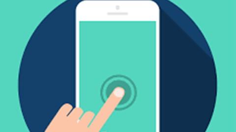 Salesforce Mobile App Customization