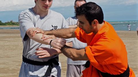 Kung Fu Shaolin Combat Level 1